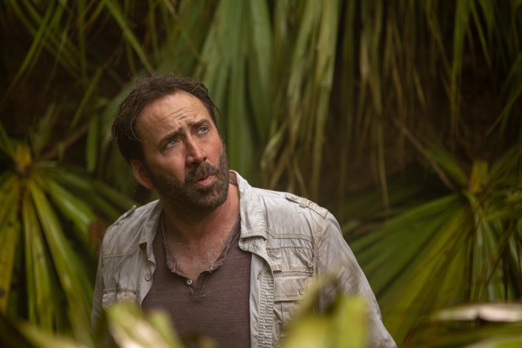 Nicolas Cage berbicara 'manusia gua bagian dalamnya' dan kapan 'membiarkan harimau keluar' di layar - Each day Information