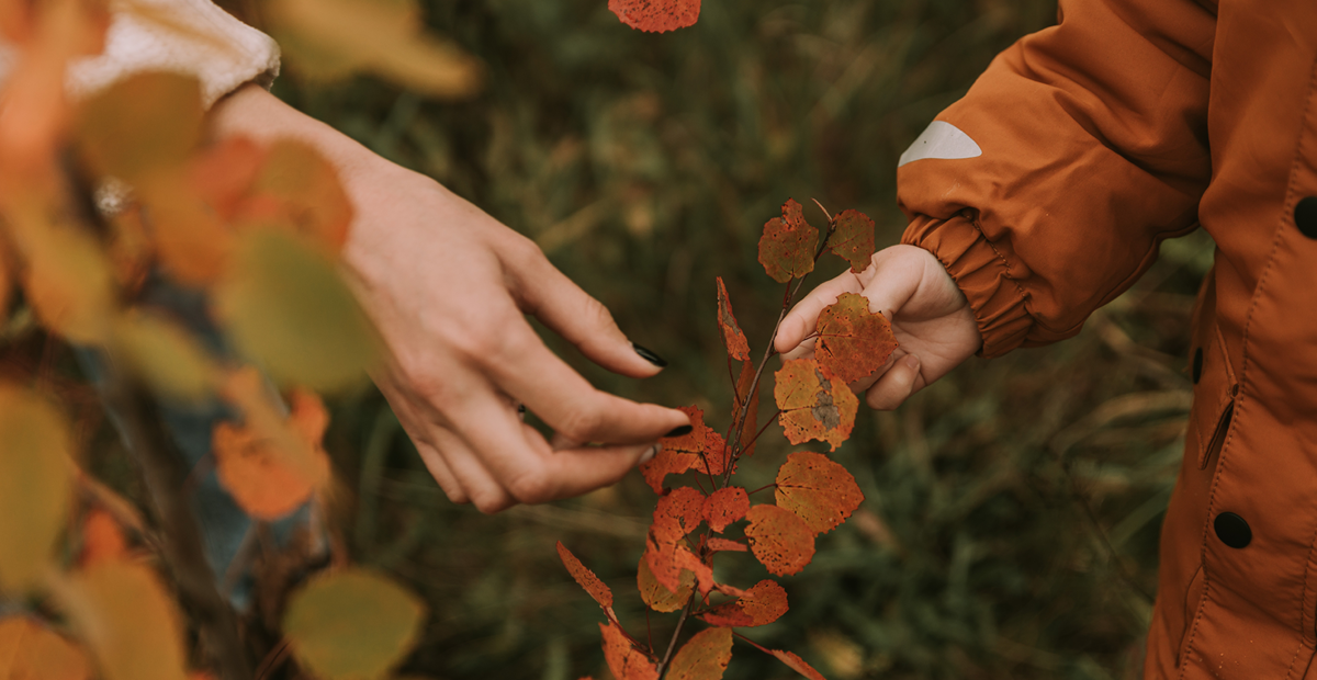Tumbuh dalam Rasa Syukur: Mempersiapkan Thanksgiving Thanksgiving