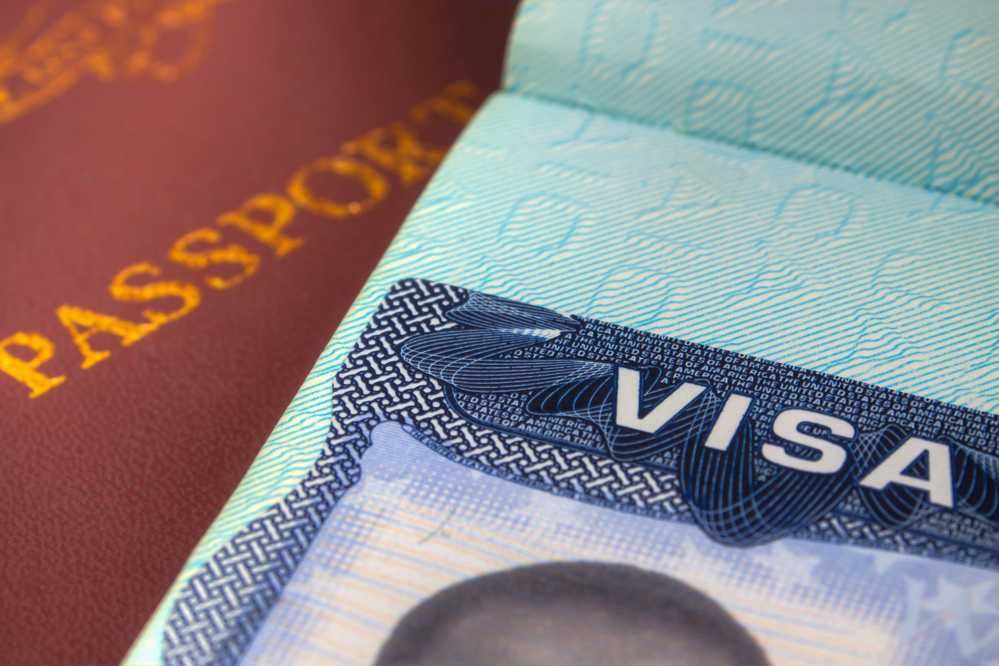 Gedung Putih Dapat Menangguhkan H-1B, Visa Lainnya Untuk Sementara