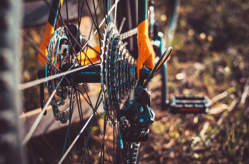 Vital Solent Cycle Charity Mendapat Peningkatan Lotere Kesehatan senilai Number 40rb