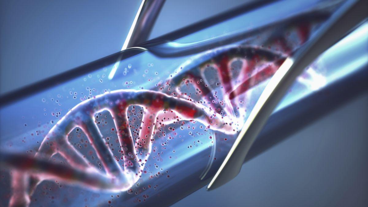 Saya mencoba tes DNA Bio-Synergy dan ternyata, menjadi pecandu kerja ada dalam DNA saya